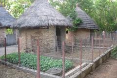 Togo 7